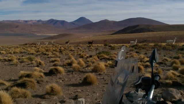 Pampas Desert in Bolivia