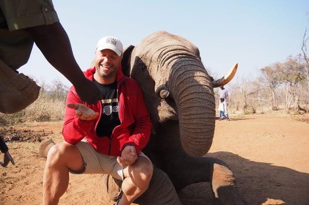 Elephant-Experience-Namibia.jpg