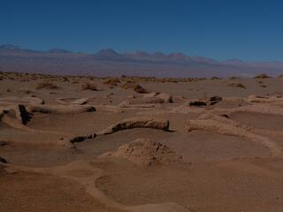 peruvian desert trip