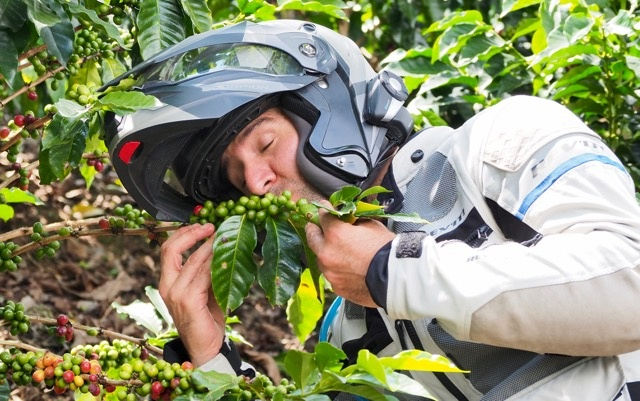 Colombian Coffee Adventure Riding