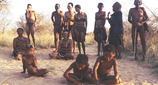 south africa bushmen