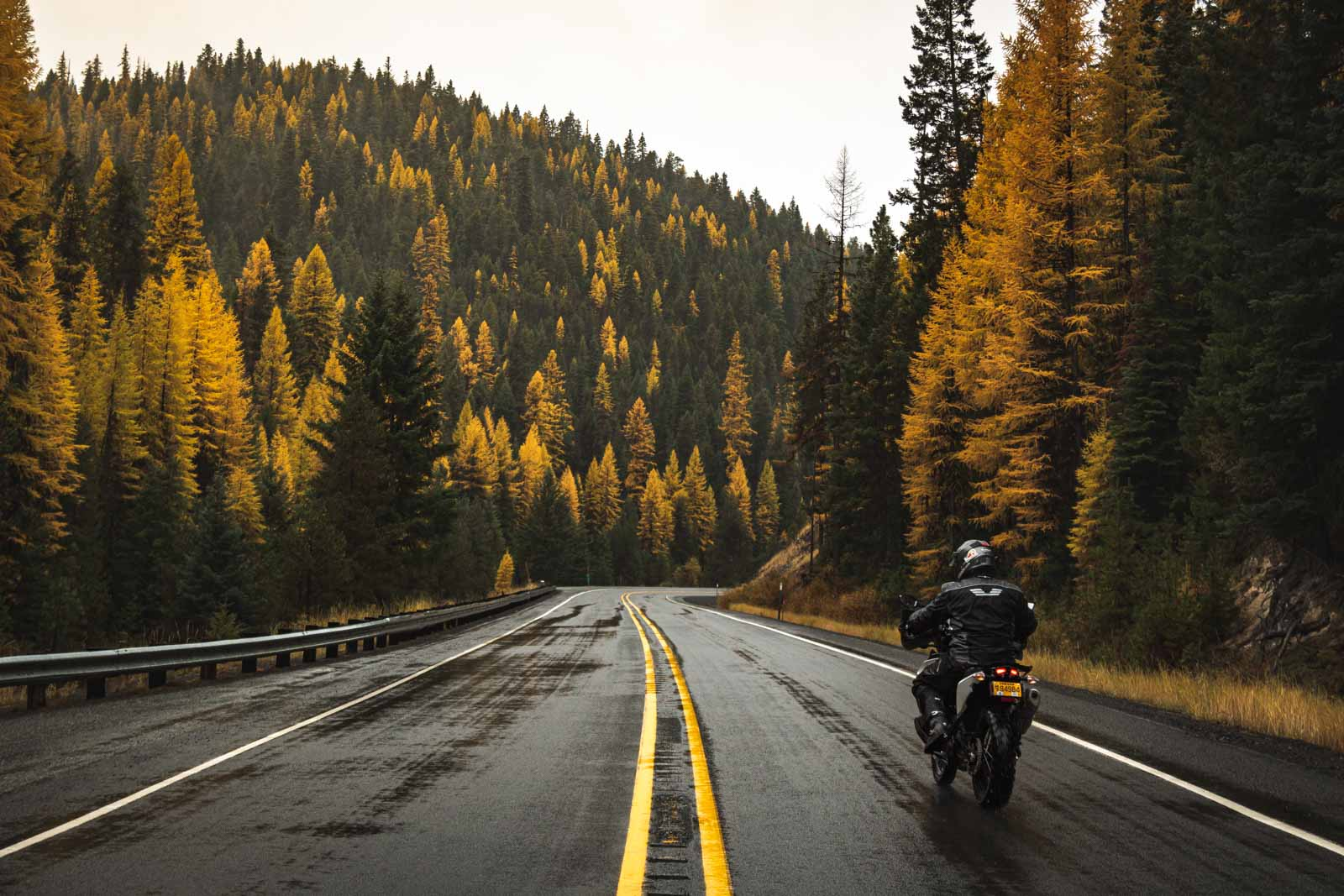 Garrett riding on pavement through the malheur national forest in Oregon