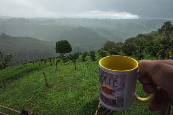 El Berlin Coffee Plantation Colombia