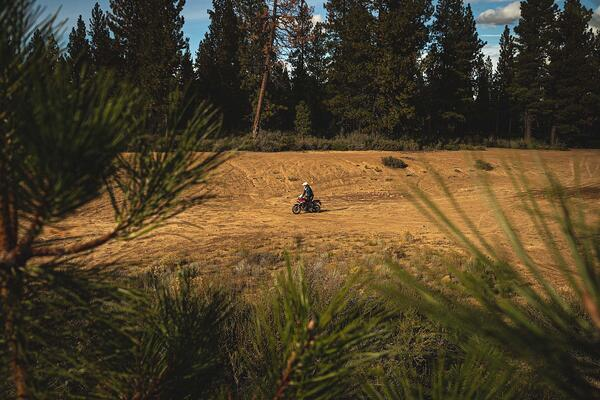 honda cb500x on dirt trails in oregon