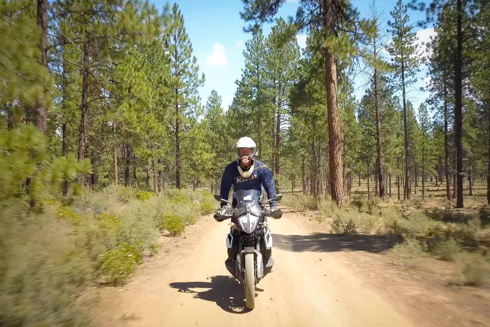 Eric on the KTM 790 Adventure heading toward the camera with a beautiful forest and trail behind him