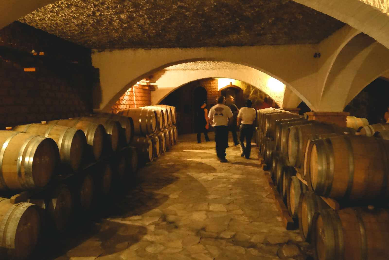 wine-guided-motorcycle-tours-in-europe