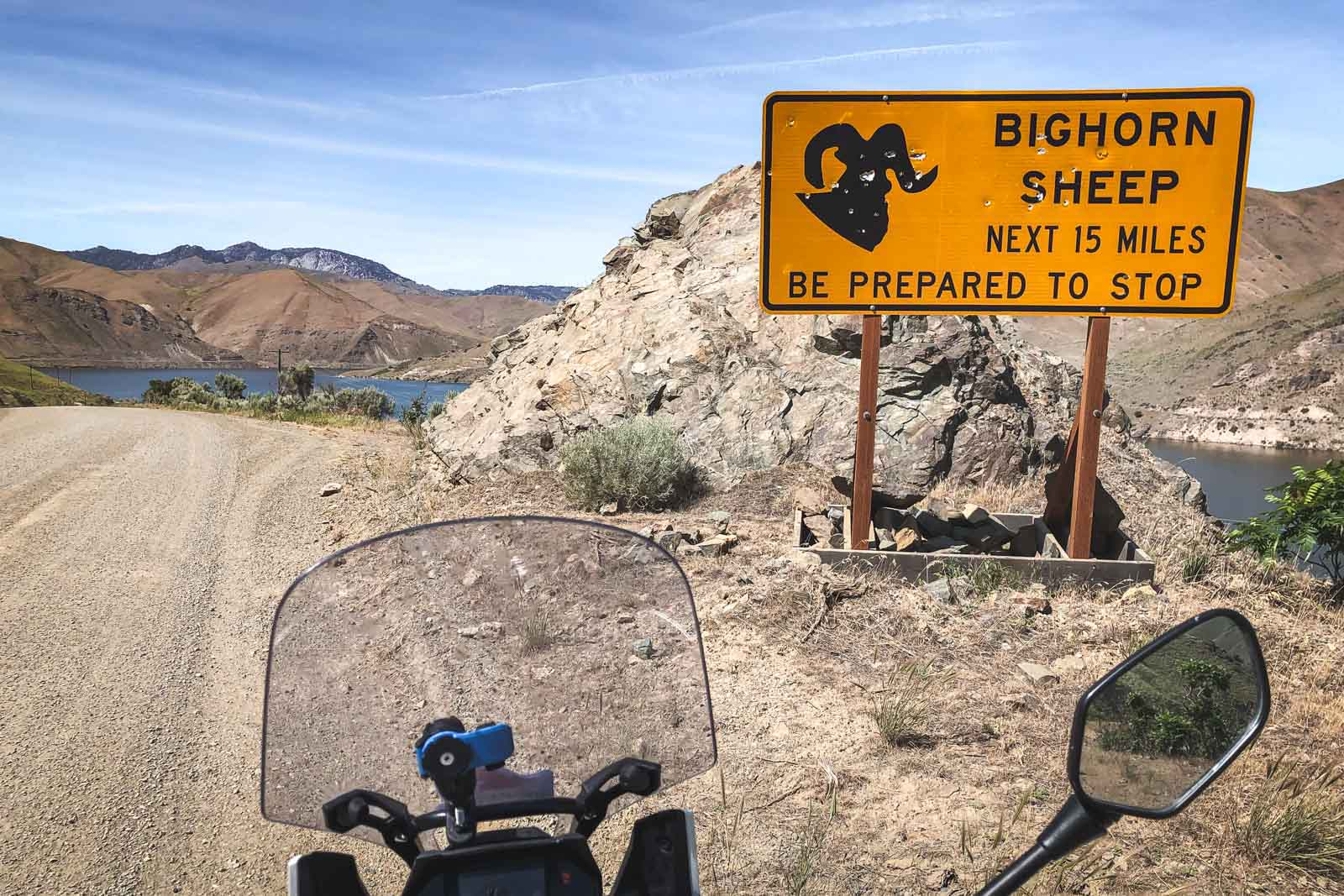 adventure_motorcycle_tour_bighorn_sheep