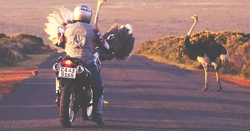 South Africa Motorcycle Rentals